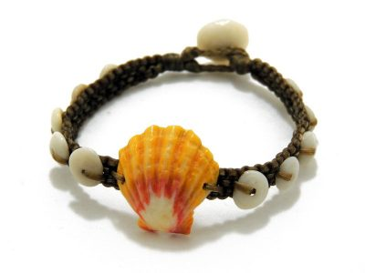 Sunrise Shell Jewlery